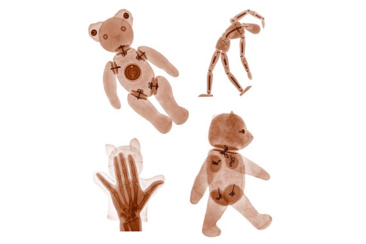 X rays of teddy bears and sock puppets